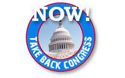 Taking Back Congress: What Americans Must Do Now