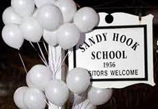 Stealth Terror III: Sandy Hook, Terrorist Enclave