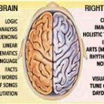 Left Brain vs. Right Brain: Side Effects and Dangers
