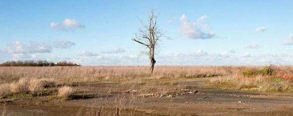 the battlefields of wwi still keep on killing in france war is crime